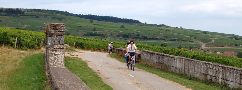 fietsen santenay bourgogne